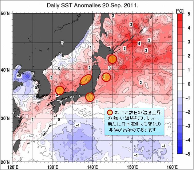 海水温解析33.jpg