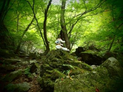 ryuukanotaki5.jpg