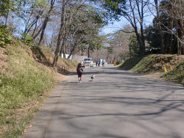 20120330CIMG7457.jpg