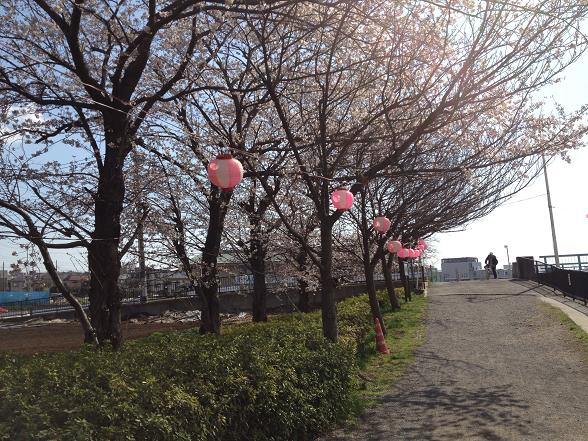 20120406写真 12-04-05 14 23 35