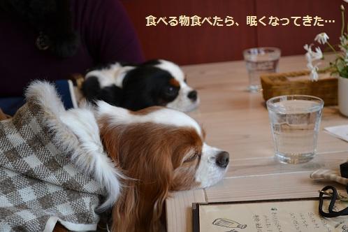 カフェで1