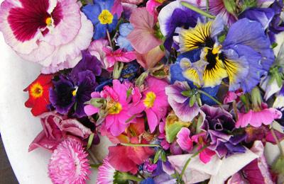 花がらも綺麗