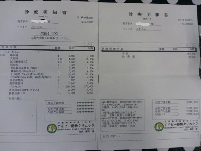 DCIM0280_20140925000607e6b.jpg