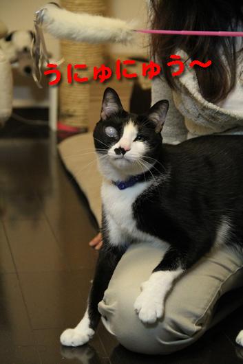 IMG_0471_Rうにゅにゅう~