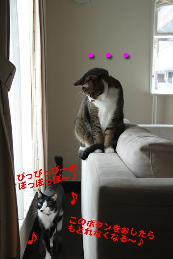 IMG_0561_Rブン・・・ゆきち鼻歌