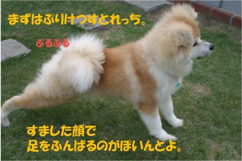 120114-2_convert_20120114235428.jpg