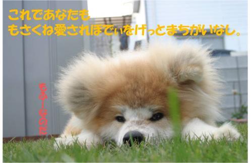 120114-6_convert_20120114235528.jpg