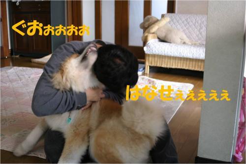 120116-4_convert_20120116232259.jpg