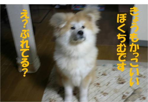 120130-1_convert_20120130212646.jpg