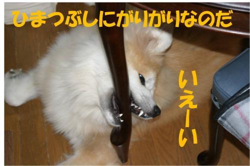 120208-2_convert_20120208211019.jpg
