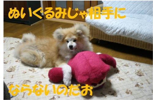 120218-1_convert_20120218214605.jpg