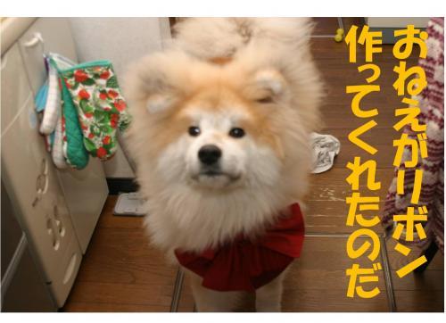 120224-1_convert_20120224214644.jpg