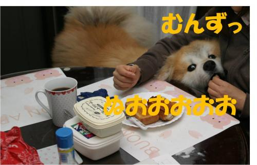 120313-8_convert_20120313205503.jpg