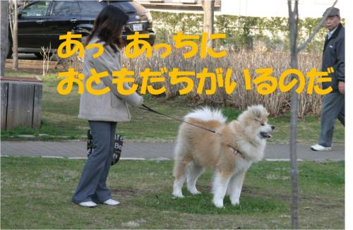120321-1_convert_20120321221512.jpg