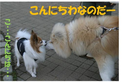 120321-3_convert_20120321221539.jpg