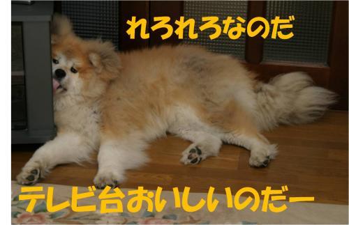 120401-4_convert_20120401194132.jpg