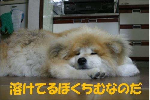 120407-2_convert_20120405225309.jpg