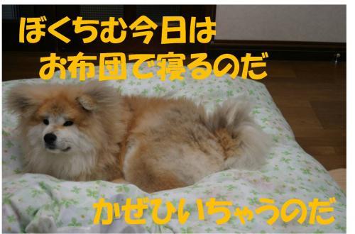 120407-3_convert_20120405225333.jpg