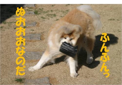 120408-2_convert_20120408212044.jpg