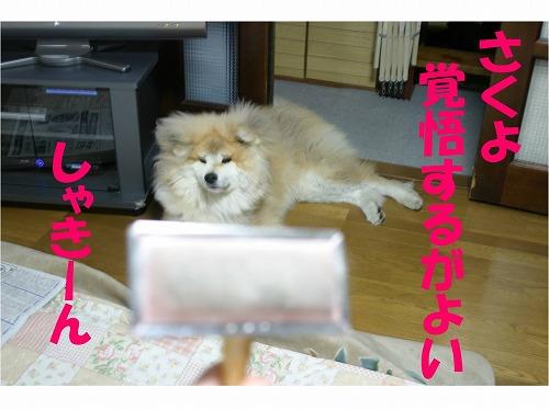 s-120506-2.jpg