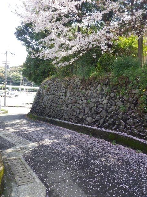 2013_03_31_hikkoshi02