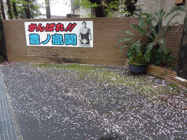 2013_03_31_hikkoshi03