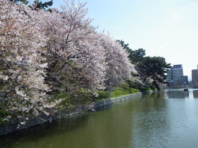 2013_04_03_ehimetokusatsu11