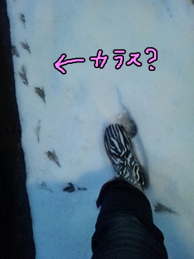 foot140214.jpg