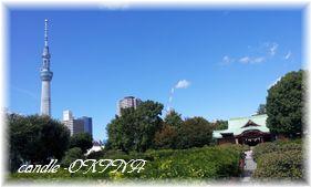 2011-10-06 12.08-a