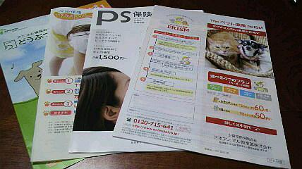 004_20111102233618.jpg