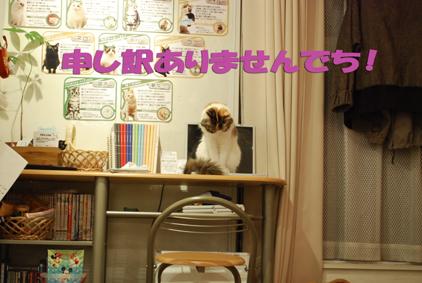 0216-(28)2_20111011191158.jpg
