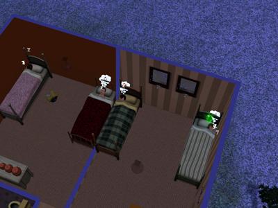 9日目ベッド2