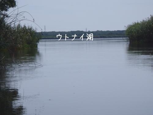 2011 08 28_7881