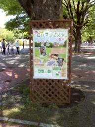 P2010_0508_101306.JPG