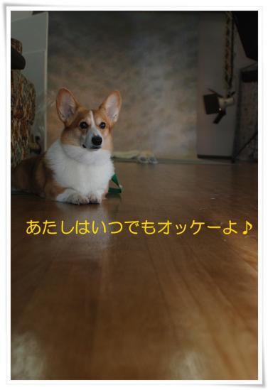 DSC_3877.jpg