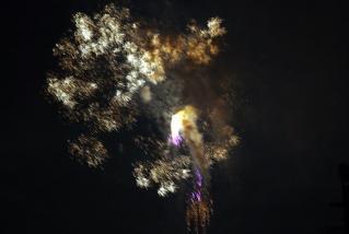20110827_senko.jpg