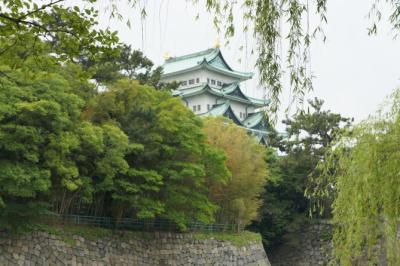 こっちから見る名古屋城は初めて
