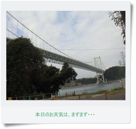 DSC00716.jpg