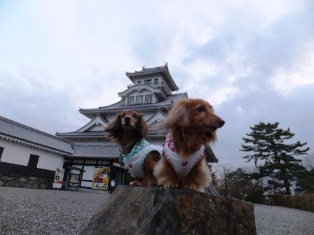 長浜城とちびチビ兄妹