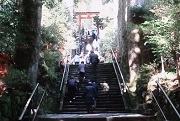 箱根神社5 石段