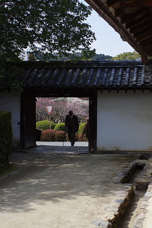 門の向こうは梅園