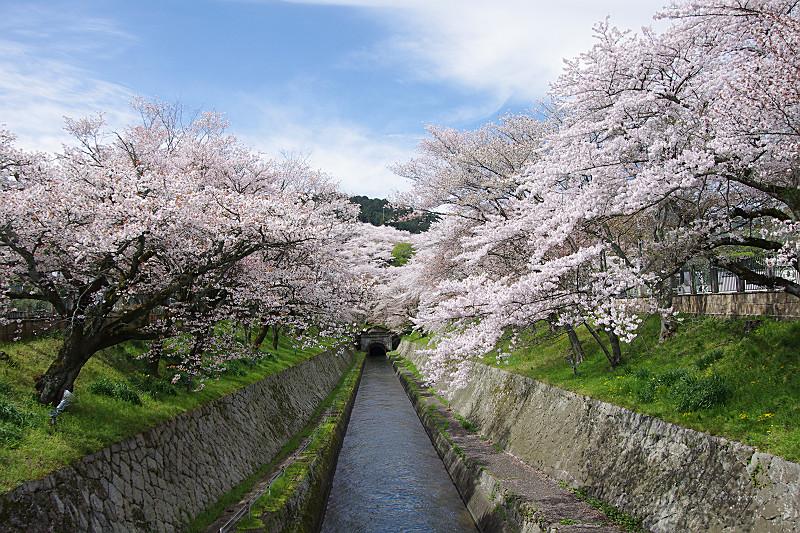 京都への旅の入り口