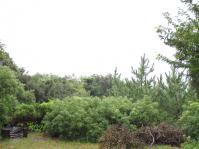 110926-4=雨の前庭海