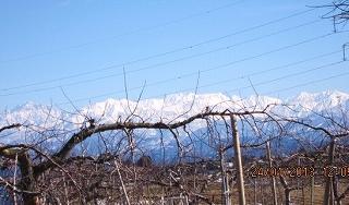 今日の立山