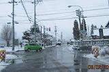 融消雪道路