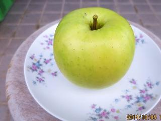 静香りんご