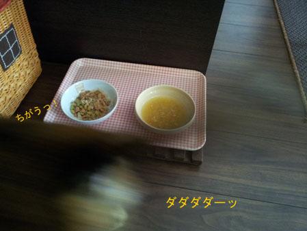 20130322_120833のコピー