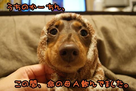 001_20120329215811.jpg