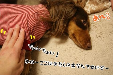 003_20120322215313.jpg