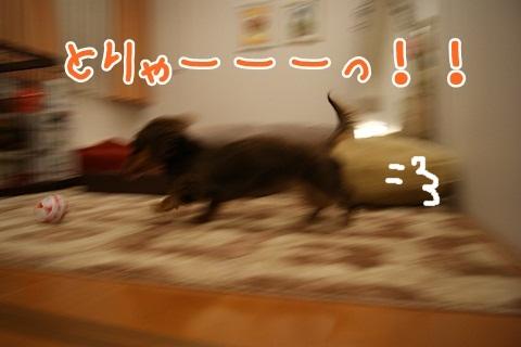 025_20120319221609.jpg